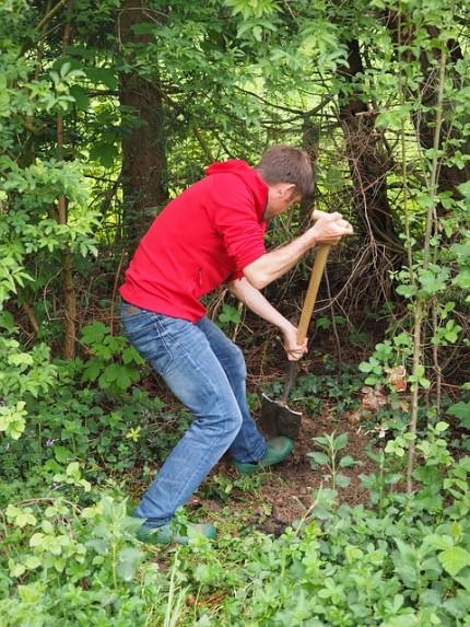 gardening-1260774_640