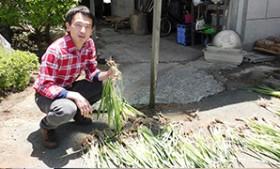 家族のきづなが深まる庭造り、体験農園